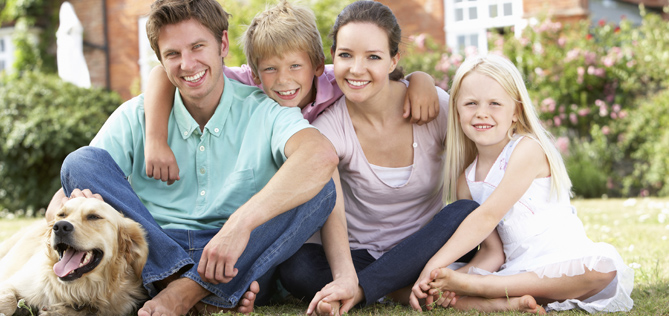 Idaho insurance coverage